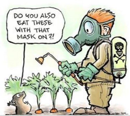 Growers defend chemicals use.
