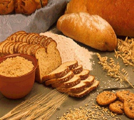 Mandatory Fortification of Folic Acid in Bread and Flour