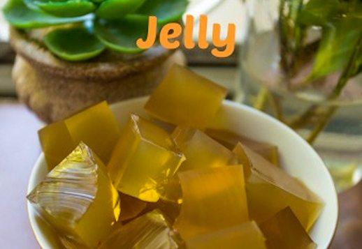 Kombucha Gummies