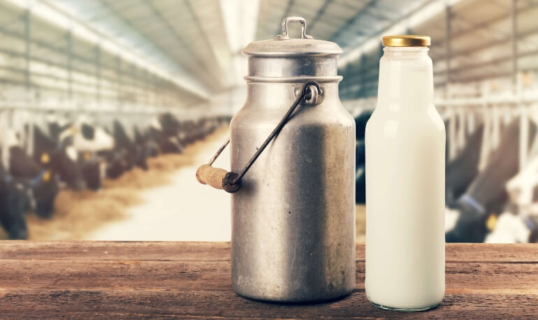 Why You Might Have a Dairy Intolerance and What You Can Do About it			    	    	    	    	    	    	    	    	    	    	5/5							(2)