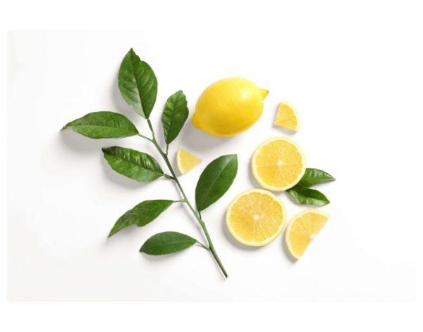Lemon_ChangingHabits762x600