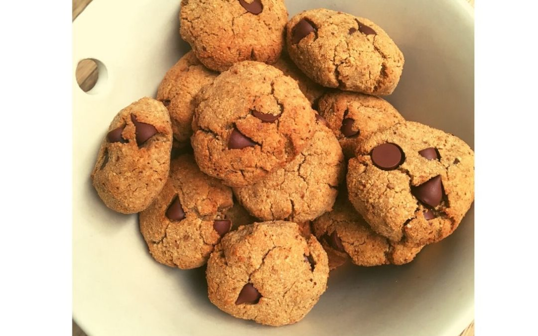 Gingersnap Cookies (with or without choc chips)
