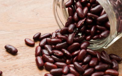 Lectins, the 'New Bad' – or Have We Got It All Wrong?
