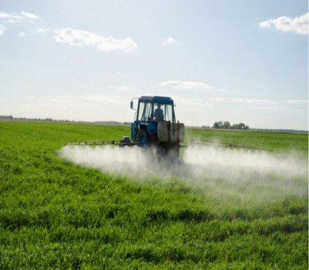 Pesticides linked to obesity, diabetes – organic clean food is safe!