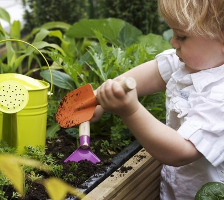Grow your own garden- TED Video