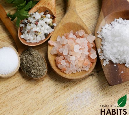 Himalayan Salt – What happens when we segment food into its component parts
