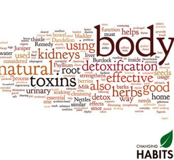 Given the right conditions – heavy metal detoxification