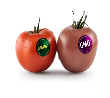 Lax food labelling rules leave consumers in dark with GM foods
