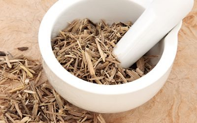 Adaptogen Herbs – Nature's Stress and Fatigue Fighters