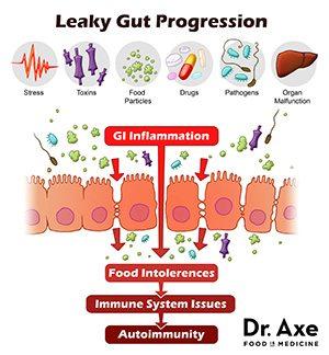 Leaky gut progression